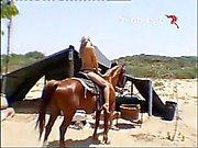 israeli sex - sukupuolta hevostilan