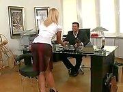 Hot tjeckiska sekreterare körd av Boss
