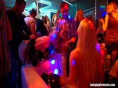 Сексуальная партии цыплят ебля в клуб
