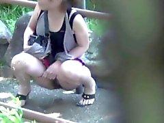 Sumea aasialainen Hồ kusta