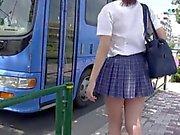 D'autobus ligne 1 en N15