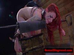 Di Sheena Rosa diventa brutale humiliatedd il suo padrone