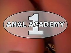Anaux Academy une