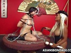 Asian busty brunette tem uma sessão de sexo amarrado