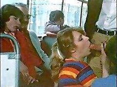 Shameless en autobús del vintage ( Camaster )