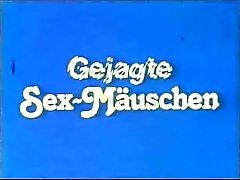 Gejagte Sex - Maeuschen