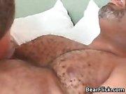 Gay zwarte beer heeft geweldige seks als hij zuigt part6