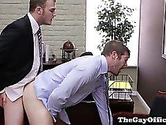 Homosexuell großes Stück Amt wobei Esel schlug