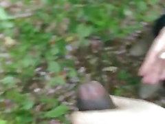 Японский Сука рывков меня в Иокогаме лесу
