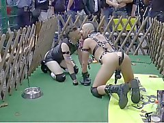 Folsom Berlin - Подчиненный а Doggyplay два от 2014