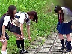 【 JAPANIIN 】 virtsaaminen tirkistelyn ammatillisten vastuuvakuutusten PIS- schoolgirl soma