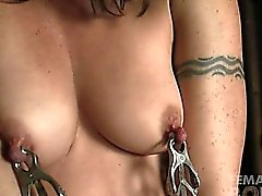 Wenona - Dungeon Nipple Clamps