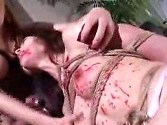 Het asiatisk könsbestämmer slav- har bunden och hett vaxade gäller då av en