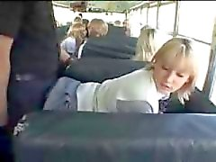 autobús gay tailandés