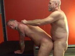 Hot Raw Bears - Cena 3
