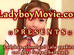Ladyboy Kız öğrenci Lala eyersiz