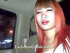 Görkemli Altın Asya Şiir Pickup