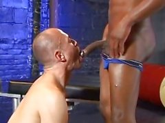 Bald guy is sucking big black cock in various exotic ways