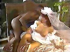 Blancos de la novia Negro Gallo