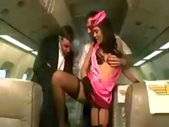 Brunette hottie Madison Parker is a stewardess giving extra service