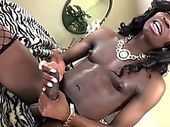 Solo hung black tgirl jerks and creams