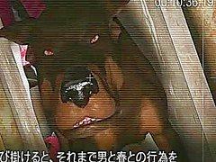 Пушистый 3д аниматоров получает собаку монстра трахал