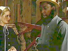 Amish siyah horoz sürtük