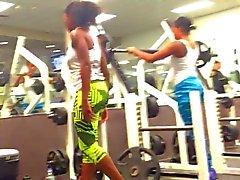 подкрадываться 2 черного красавицы на уровне l.a фитнес