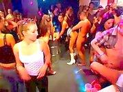 Wild Bar Orgy