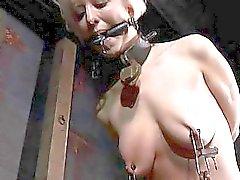 Hart teasing zum beautys Nippel unbehaarte Kätzchen