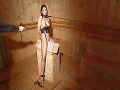 Slave Training - Zafira