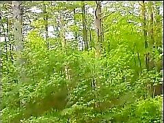 Maine Sexplorers - motiv två - järn Hästar