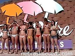 Whole Sorority House de meninas nuas no férias da primavera