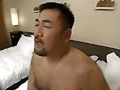 asiático oso