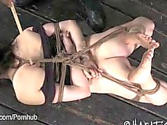 Trigueno de Hogtied y pie Tortured