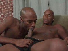 Pau grande cara preta cava seu pau profundamente dentro ass gay de seu amigo