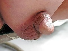 Study Of A Little Penis In Shed 2