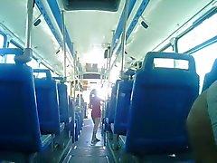 Culo it bus
