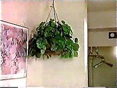 Sukupuolta lasinalaisviljelyksi ( 1992 )