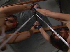 Legati insieme con January Seraph ed Ashley di Renee in lattice