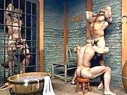 3D Качок Свободный геев Мужчины !
