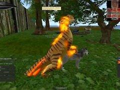 Gold Raptor apareamiento con un lobo
