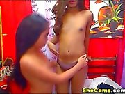 Tiny Tits Shemales Striptease and Masturbate