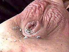 Kleiner Penis Ashtray