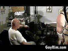 Гомосексуалисты Ребят в кожаных У Оргия