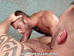 Bruno Knight and Jason Michaels