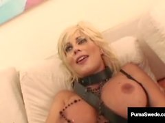 Swedish Sex Goddess Puma Swede Gets A Hot Load In Her Face!
