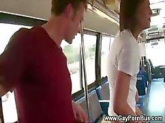 Blowjob wendt zich tot anale seks op de openbare bus voor homopaar