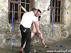 Gay XXX With his gentle balls tugged and his sausage drained