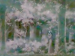 Japanilaiset Hentai pyydetyt ja pääsee nuolaisi wetpussy ja rinnat